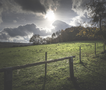 Paysage de la vallée de Chevreuse