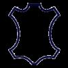 Pycto cuir